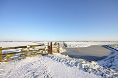 Wintertime in the countryside from Netherlands Royalty Free Stock Images