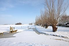 Wintertime in the countryside from Netherlands Royalty Free Stock Photo