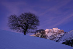 Wintertime em Switzerland central Fotografia de Stock