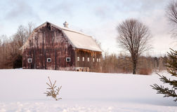 Wintertime Farm Field Barn Agricultural Structure Ranch Building Royalty Free Stock Photos