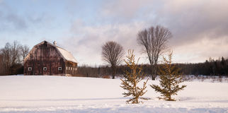 Wintertime Farm Field Barn Agricultural Structure Ranch Building Stock Photo
