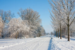 Wintertime in farmland of the Netherlands. Winterlandscape in the Noordoostpolder; big farmland of the Netherlands stock photography