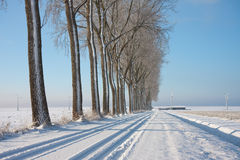 Wintertime in the farmland of the Netherlands. Wintertime in the snowy farmland of the Netherlands stock images