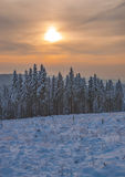 Wintertime in Harz National Park,Germany Royalty Free Stock Image