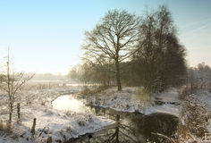 Wintertime icy river. Snowy meadow with horses in Holland Royalty Free Stock Image