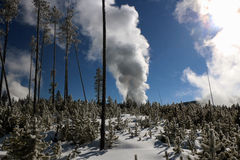Wintertime image in Yellowstone National Park. Royalty Free Stock Photo