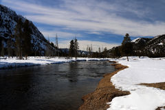 Wintertime image in Yellowstone National Park. Yellowstone National Park in Winter royalty free stock images