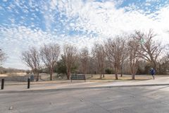 Urban park bare tree, altocumulus cloud, fountain lake in Texas,. Wintertime at a large urban park in South Irving, Texas, USA. Bare trees under altocumulus Royalty Free Stock Photo