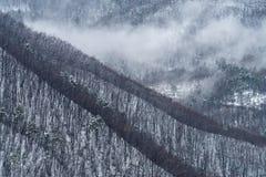 Fog revealing the mountain range royalty free stock photography