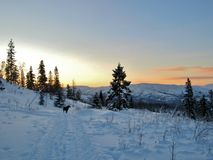 Wintertime in Norway Royalty Free Stock Photography