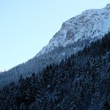 Snowy Alpine Pine Forest Cliffside. Wintertime snow ice covered mountainous alpine pine forest panorama near Schloss Neuschwanstein and Hohenschwangau castles in stock photography
