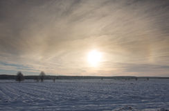 Wintertime sunset over meadow Stock Image