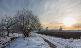 Wintertime sunset over meadow Royalty Free Stock Photos