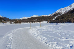 Wintertime vew in Davos, Switzerland. Wintertime view in the town of Davos, Switzerland: walkway along frozen Lake Davos, summits covered by snow in the Royalty Free Stock Photo