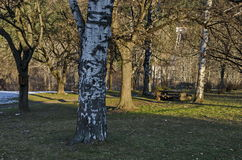 Wintertime view with place for respite in the park, Pancharevo Royalty Free Stock Photo