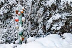 Wintertime w nowa Scotia Obrazy Royalty Free