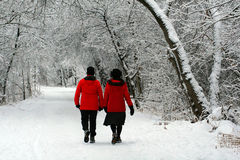 A Wintertime Walk. Two women hike a wintertime trail amid a recent beautiful snowfall Royalty Free Stock Images