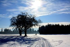 Wintertime. In Bavaria Stock Photography
