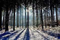 Wintertime. In Bavaria Royalty Free Stock Image
