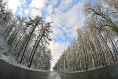 Winterträume lizenzfreies stockbild