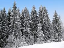 Winterurlaub-Themahintergrund Lizenzfreie Stockfotos