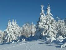 Winterurlauberholungsort in KrkonoÅ-¡ e Bergen Lizenzfreie Stockbilder