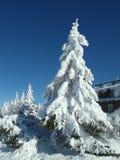 Winterurlauberholungsort in KrkonoÅ-¡ e Bergen Lizenzfreies Stockbild