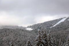 Winterurlaubsort Pamporovo in Bulgarien, Europa stockfotografie