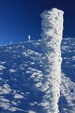 Winterversuch Lizenzfreie Stockbilder