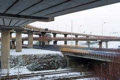 Winterverzweigung Lizenzfreies Stockfoto