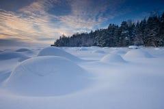 Wintervormittag stockfotos