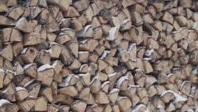 Wintervorrat des Brennholzes Harvested faltete Lager des Brennholzes im Winter stock footage