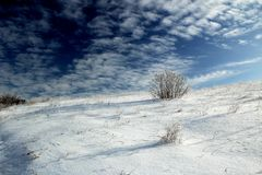 Winterwüste Stockfoto