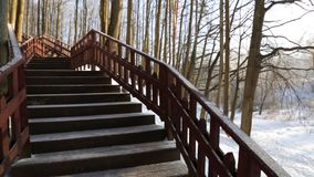 Winterwald, beleuchtet durch die Sonne, die Treppe in stock video footage