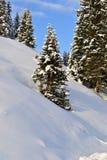 Winterwald, Fichten im Schnee im Ural, Region Russlands, Tscheljabinsk, Minyar Pushkin-` s Märchen stockbilder