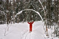 Winterwald. Frauen-Skifahrer, der mit den Händen oben lächelt Stockfotos