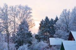 Winterwald landscape2 stockbilder