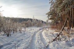 Winterwald in Russland Lizenzfreie Stockbilder