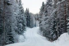 Winterwald und eine Schneestraße Lizenzfreie Stockfotografie