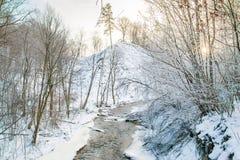 Winterwald und -fluß Lizenzfreies Stockfoto
