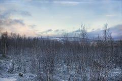 Winterwald und -steinbruch auf dem Hügel stockbilder