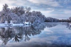 Winterwaldfluß Lizenzfreies Stockfoto