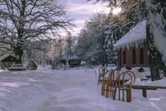 Winterwaldlandschaft Stockfoto