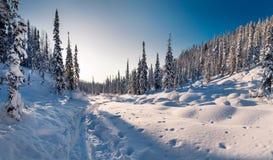 Winterwanderung in der Reserve 'Kuznetsky Alatau ' lizenzfreies stockbild
