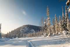 Winterwanderung in der Reserve 'Kuznetsky Alatau ' lizenzfreie stockbilder