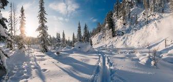 Winterwanderung in der Reserve 'Kuznetsky Alatau ' stockfotografie