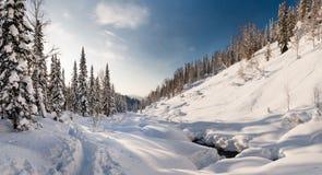 Winterwanderung in der Reserve 'Kuznetsky Alatau ' lizenzfreie stockfotos