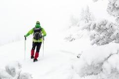 Winterwanderung im weißen Holz, im Blizzard und im Schneien Lizenzfreie Stockbilder