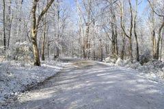 Winterweg Lizenzfreies Stockfoto