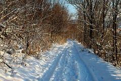 Winterweg Stockfotos